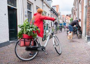シティサイクル おすすめ 普段