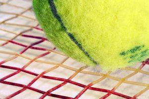 テニス ガット おすすめ 素材