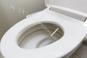 温水洗浄便座 おすすめ 作り方